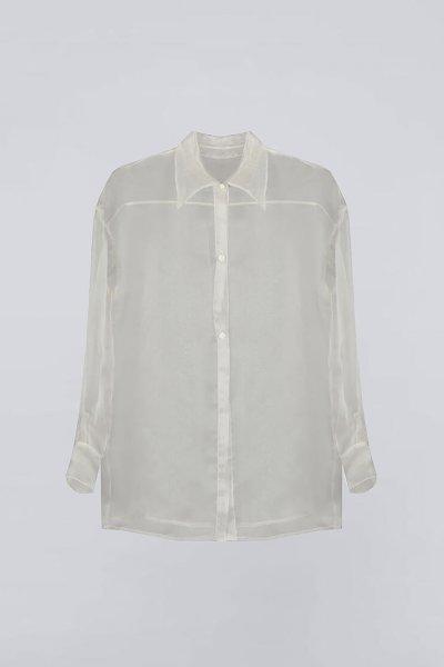 Прозрачная блуза из органзы IRRO_IR_WC19_SO_008, фото 1 - в интеренет магазине KAPSULA