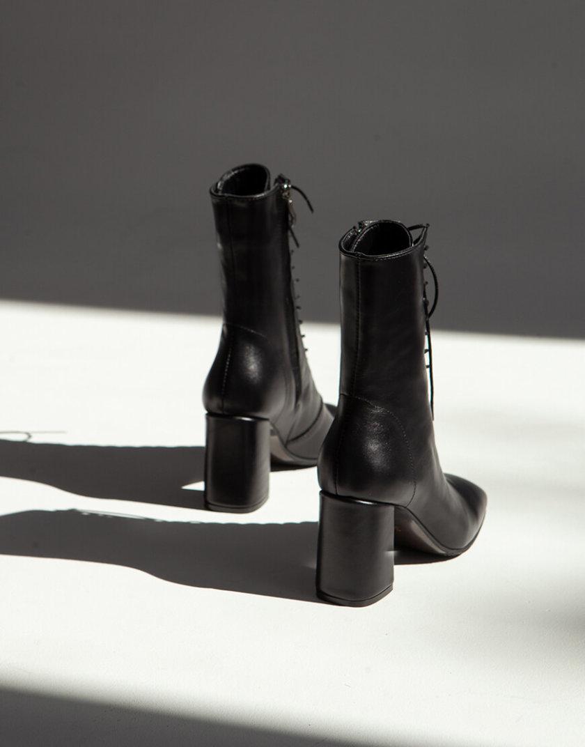 Кожаные ботильоны Shanty N ED_SHTN-01, фото 1 - в интернет магазине KAPSULA