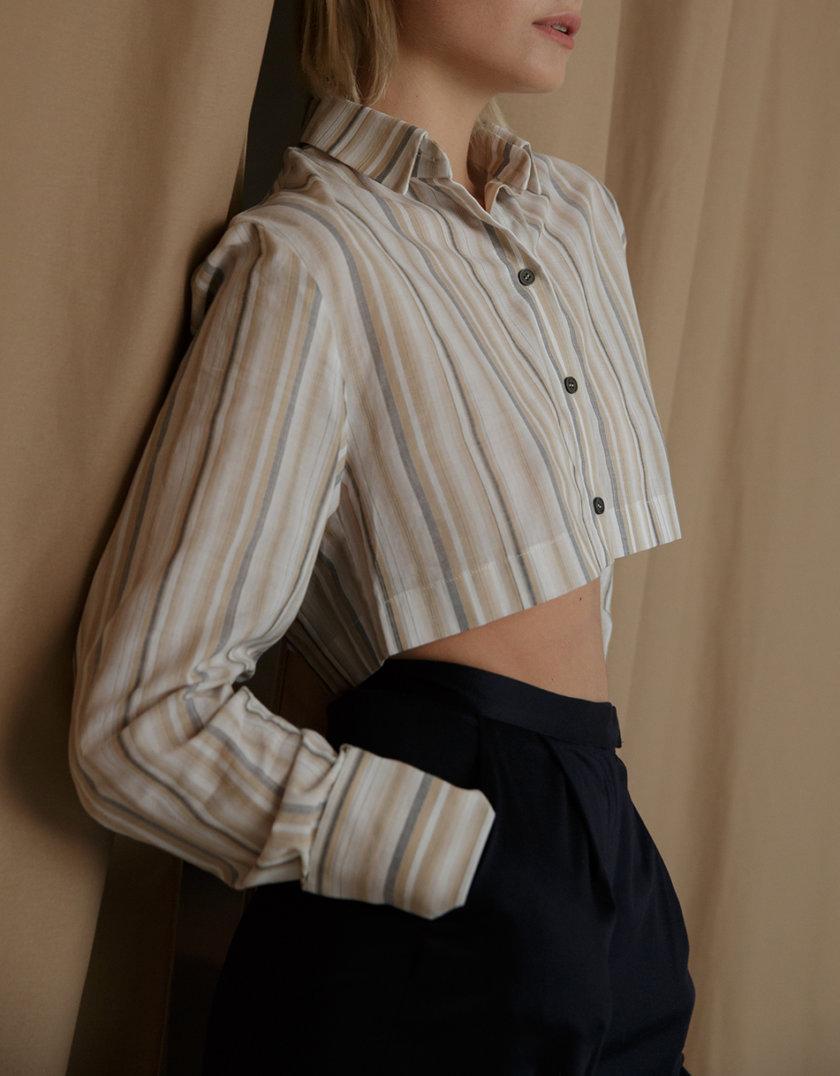 Рубашка укороченная из хлопка SLR_SS21_25, фото 1 - в интернет магазине KAPSULA