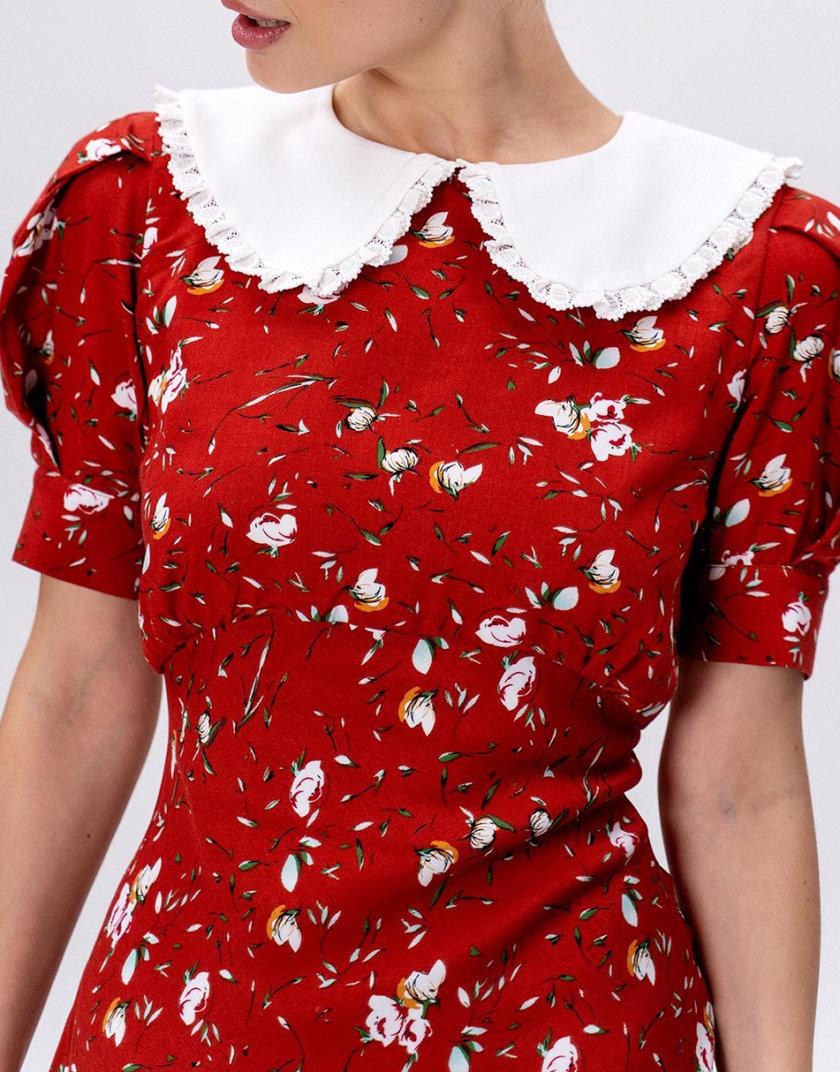 Платье Anna MC_MY5421-4, фото 1 - в интернет магазине KAPSULA
